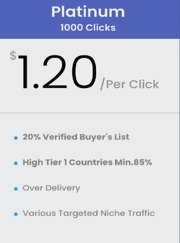 buy 1000 clicks buyers list solo ads