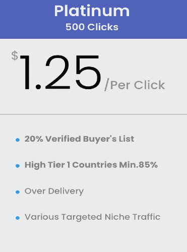 buy 500 Clicks Buyers list solo ads